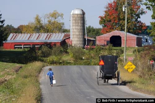 Amish boy, walking to school, lunch pail, WI, Wisconsin, road, farm, barn, carriage, buggy, horse drawn carriage, agricultural scene,country,child,barefoot