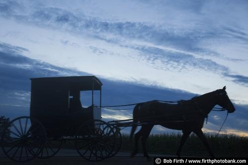 Amish buggy, horse drawn carriage,WI, Wisconsin,silhouette,twilight,dusk,country,road,workhorse,night,evening sky,agriculture,agricultural scene