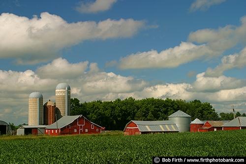 Barns;agriculture;country;farm;farm buildings;MN;Minnesota;rural;midwest farm;clouds;white puffy clouds;farm field;crops;farmstead;red barn;silo;silos;summer;summer trees